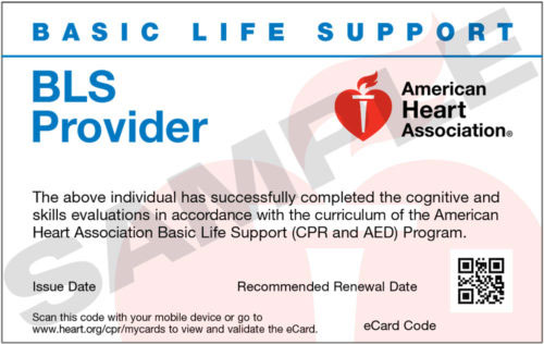 bls card cpr support lost aha provider healthcare basic association heart american cards renewal training providers aid pals course aed